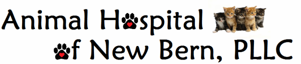 Animal Hospital of New Bern, PLLC